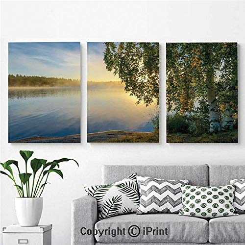 Modern Salon Theme Mural Sunny Day by Misty Lake with Tree Summer Season Horizon August Landscape Painting Canvas Wall Art for Home Decor 24x36inches 3pcs/Set, Fern Green Light Blue August Moon Outdoor Wall