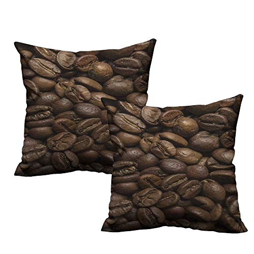 Coffee Pillow Covers Flavored Roasted Arabica Beans Ready for Brew Fresh Drink of Mocha for Robust Breakfast Velvet Soft Soild Decorative 20