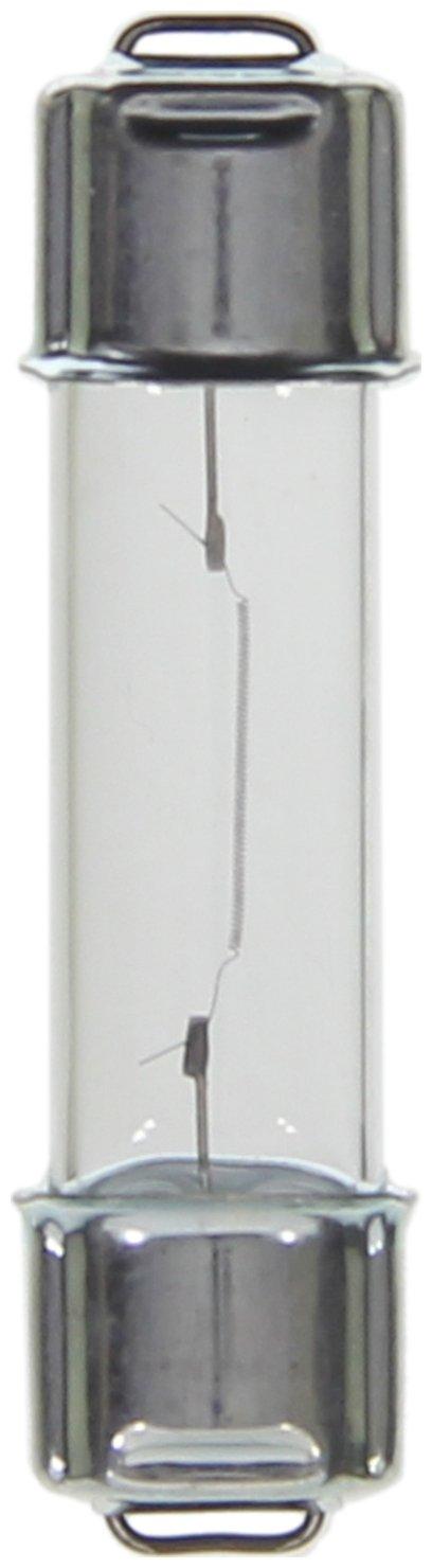 Wagner Lighting BP2122 Miniature Bulb Card of 2
