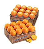 Juicy Indian River Florida Navel Oranges Grove Fresh 2 Trays, 20lbs