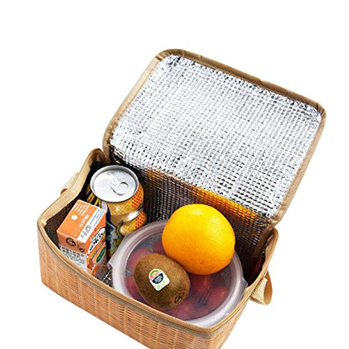 IslandsePortable Insulated Thermal Cooler Lunch Box Tote Storage Bag Picnic Container Khaki