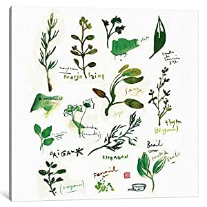 "iCanvasART 1-Piece Herbs Canvas Print by Lucile Prache, 26"" x 26""/1.5"" Deep"
