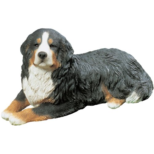 Sandicast Mid Size Bernese Mountain Dog Sculpture, Lying