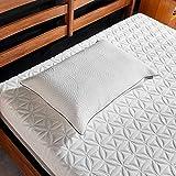 Tempur-Pedic TEMPUR-Protect Pillow Protector, Queen