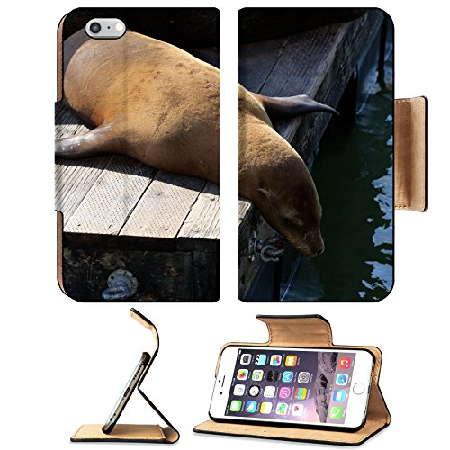 Liili Premium Apple iPhone 6 Plus iPhone 6S Plus Flip Pu Leather Wallet Case IMAGE ID: 6342657 Sea lions at Pier 39 San Francisco - At Shops Pier The