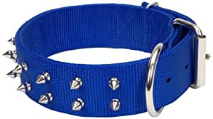 Coastal Pet Products Spiked Nylon Pet Collar, 1-3/4 by 30-Inch, Blue
