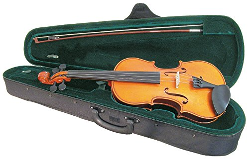 Santa Rosa 1/2 Size Handmade Violin/Fiddle, 4-String With With Bow, Rosin and Case, Right Handed (SRV50)