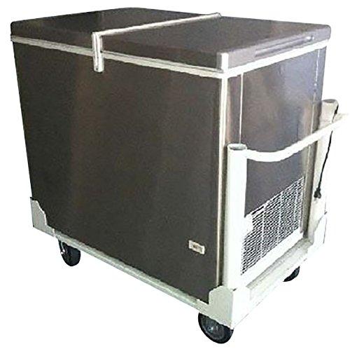 6ffe, 9.7 Cu Ft Push Cart Ice Cream Freezer - Ice Cream Vending Cart