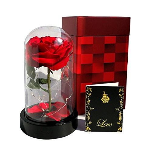 "Homeseasons "" Beauty and the Beast ""- Enchanted LED Red Rose in Glass Dome by Homeseasons"