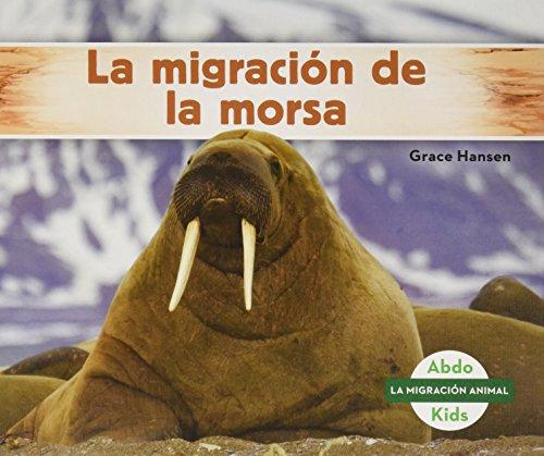 La Migracion de la Morsa (Walrus Migration) (Spanish Version) (La migracion animal/Animal Migration)  [Hansen, Grace] (Tapa Dura)
