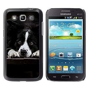 YiPhone /// Prima de resorte delgada de la cubierta del caso de Shell Armor - Border Collie Black White Dog Pet Canine - Samsung Galaxy Win I8550 I8552 Grand Quattro
