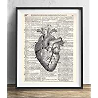 Anatomical Heart Vintage Upcycled Dictionary Art Print 8x10, unframed