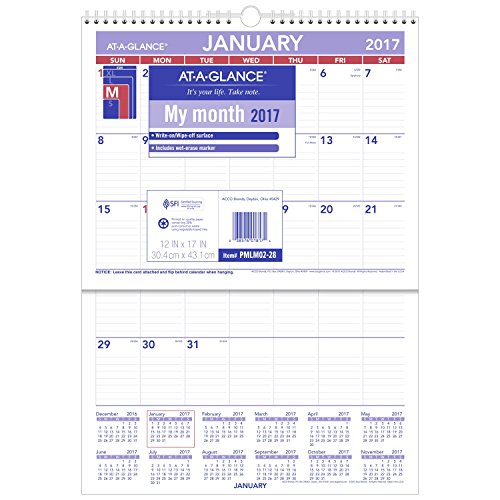 GLANCE Monthly Calendar Erasable PMLM02 28