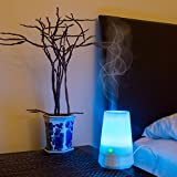 Comforday Aromatherapy Essential Oil Diffuser Air Humidifier