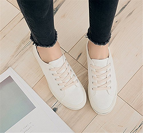 Casual Blanc Femme De Mode Sport Baskets Chaussures Toile wR4EqUP