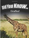 Giraffes, Breanne Satori, 1495340937