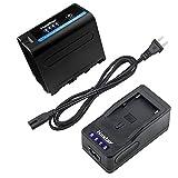 Kastar LED Super Fast Charger + Battery for Sony NP-F970 Pro NP-F990 NP-F975 NP-F960 NP-F950 NP-F930 NP-F770 NP-F750 NP-F730 NP-F570 NP-F550 NP-F530 NP-F330 Battery, Sony Camcorder and LED Video Light