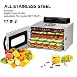 6 Trays Food Dehydrator,Commercial Stainless Steel Dehydrator Raw Food & Jerky Fruit,400W Preserve