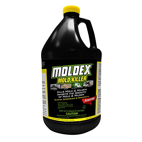 ENVIROCARE 5520 Moldex Disinfectant 1 Gallon product image