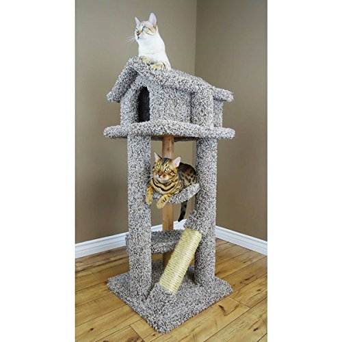 - Wood Large Cat Tree 2 Beds Kitty Tower Pagoda House, Gray Carpet