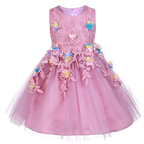 OKIDSO Princess Dress Flower Girl Dress Tulle Lace Dress Sleeveless Embroidered Flower Bubble with Bowknot (Pretty Bubble Dress)