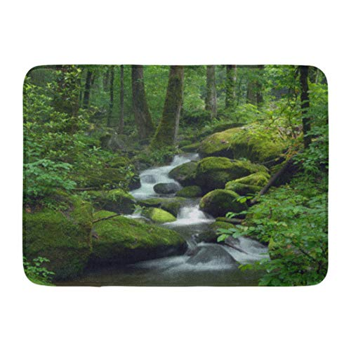 (Emvency Doormats Bath Rugs Outdoor/Indoor Door Mat Green Forest Cascade Falls Over Mossy Rocks Waterfall Water Stream Bathroom Decor Rug Bath Mat 16