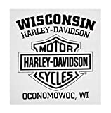 Harley-Davidson Men's Distressed Freedom Fighter