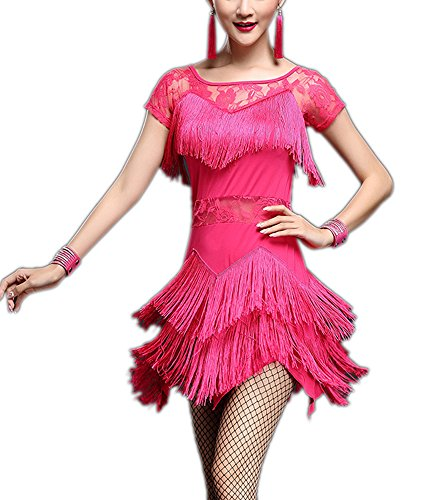 Fringe Lace Short Sleeve 1920's 20s Flapper Style Dance Outfits Dresses Pink (20s Outfit)