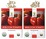 Organic Pink Brandywine Tomato Seeds - 2 Seed Packets! - Over 100 Heirloom Non-GMO USDA Organic Seeds