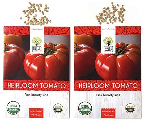 brandywine tomato - 8