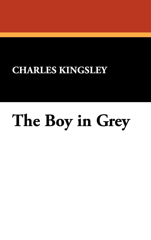 Download The Boy in Grey pdf epub