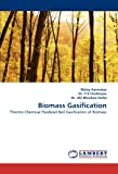 Biomass Gasification: Thermo Chemical Fluidized Bed Gasification of Biomass