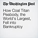 How Coal Titan Peabody, the World's Largest, Fell into Bankruptcy | Chris Mooney,Steven Mufson