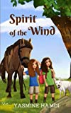img - for Spirit of the Wind book / textbook / text book