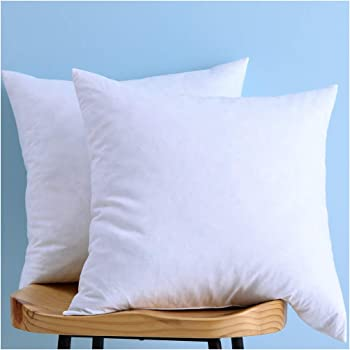 24x24 Pillow Insert Magnificent Amazon BASIC HOME 60X60 Euro Feather Down Pillow Insert 60