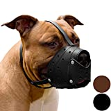 CollarDirect Pit Bull PitBull Terrier Secure Basket Dog Muzzle Genuine Leather Staffordshire Terrier (Black)