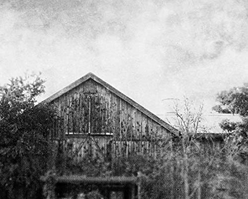 Architectural Photos White Black (Barn Photo Country Decor Black and White Architectural photography 8x10 inch print)