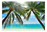 wall26 - Large Wall Mural - Tropical Scenery with Palm Trees   Self-Adhesive Vinyl Wallpaper/Removable Modern Decorating Wall Art - 66'' x 96''