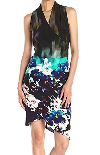 Nicole Miller Women's Stefanie Dress in Misty Flowers Print, Asymetrical Hem, Multi, (Nicole Silk Skirt)