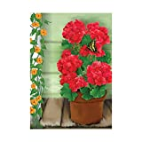 Decorative Accessories The Red Hydrangea Banner Outdoors Flags Of Double Sided Waterproof And Fade Resistant Printed banners 28 X 40 Inch 100% Polyester