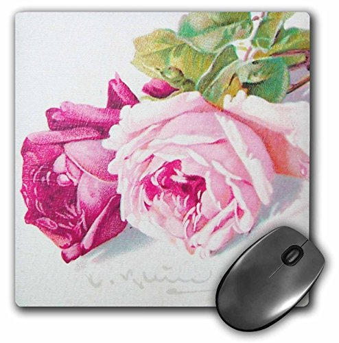 Price comparison product image 3dRose LLC 8 x 8 x 0.25 Inches Catherine Klein Pink and Red Roses Painting Copy Antique Feminine Flowers Mouse Pad (mp_151401_1)