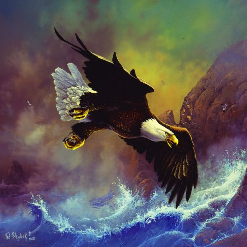 Seaside Eagle 1000pc Jigsaw Puzzle by Ted Blaylock