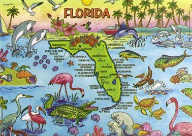 Florida Map Fridge Collector's Souvenir Magnet 2.5