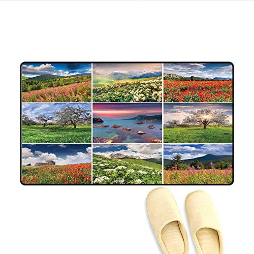 - Bath Mat Collage with Nine Different Square Framed Freshening Summer Landscapes Rural Nature Door Mat Small Rug Multicolor 24