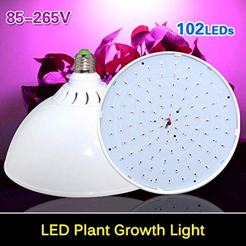 Led Coral Grow Lights in US - 9
