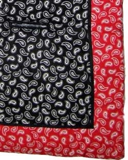 Black & Red Paisley Stroller Liner - Made In USA