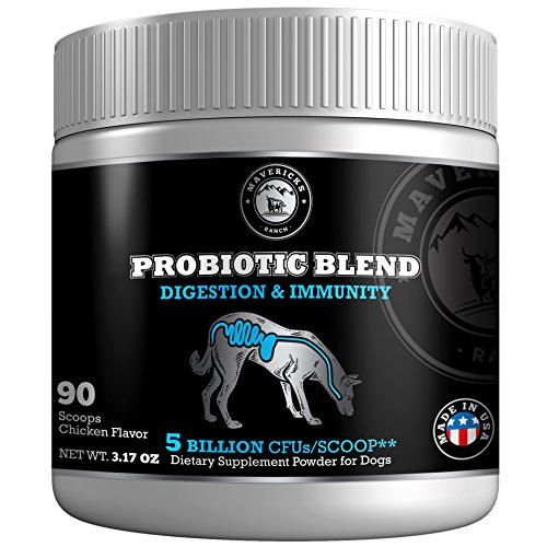 Cheapest Mavericks Ranch Probiotics For Dogs | 9 Canine Friendly Strains | 5 Billion CFUs/Scoop | Unique Gut Flora Digestive Enzymes Powder | 30-90 Day aid | 100% and organic Pet Supplement & Made In USA | Check this out.
