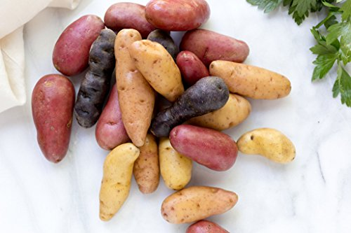 seed potatoes mix - 5