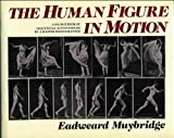 The Human Figure in Motion, Eadweard Muybridge and B. L. Masterson, 0517641070