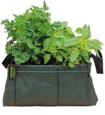 Minihuerto hortalizas V343414: Amazon.es: Jardín